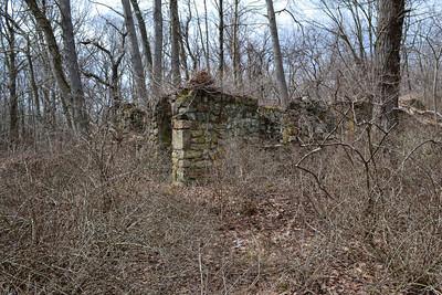 Harriman - House ruins - 3/4/12