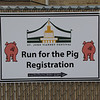 Run for the Pig at St. John Vianney