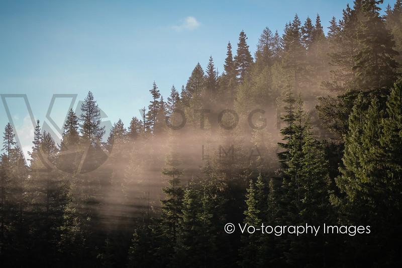 2013 Trail Rail Run (p1cs)-48