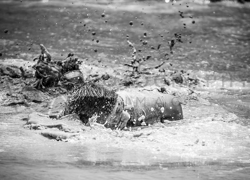2014 Montana Mucker - Helena - Mud Pool (f)-389