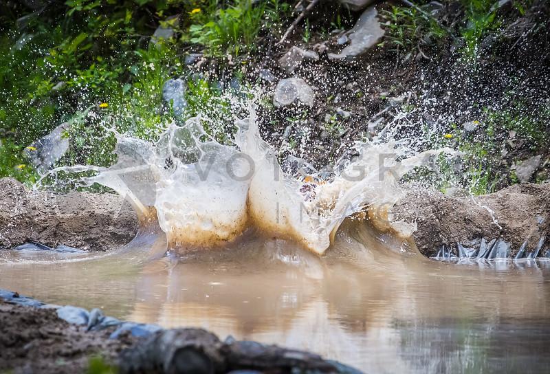 2014 Montana Mucker - Helena - Mud Pool (f)-293