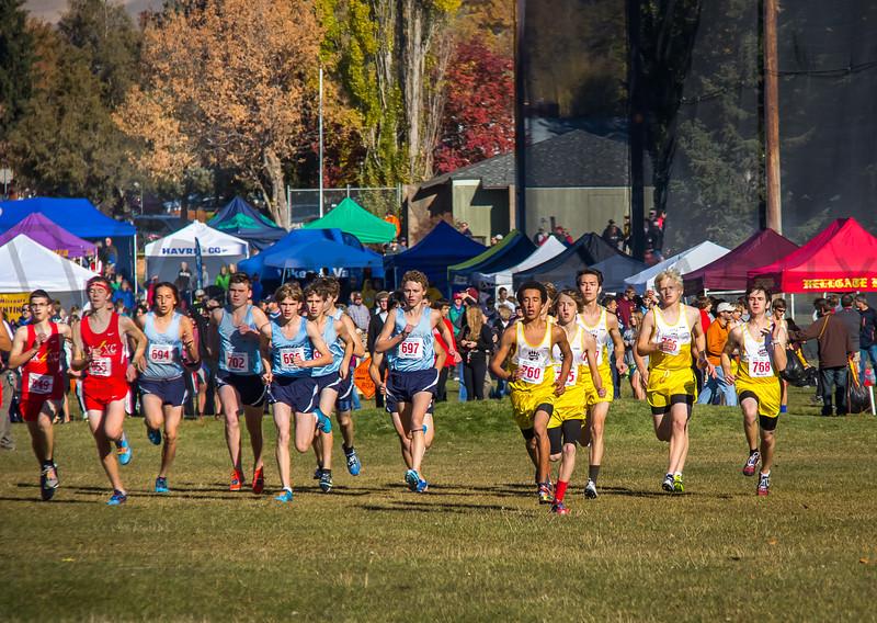 2013 State XC Championship - Class AA - Boys (fs)-5