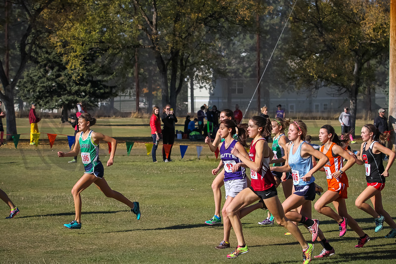 2013 MHSA State XC Championships - Class AA - Girls-26