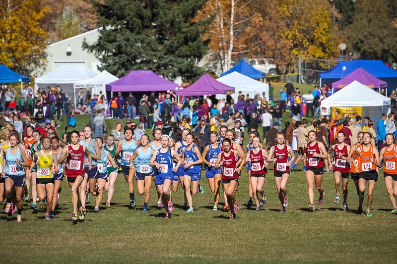 2013 MHSA State XC Championships - Class AA - Girls-9
