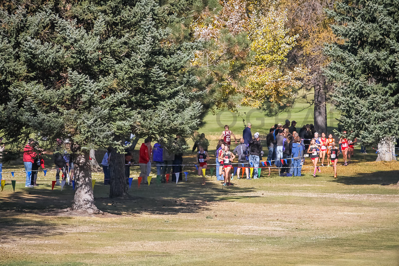 2013 MHSA State XC Championships - Class AA - Girls-39