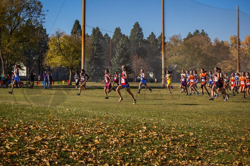 2013 MHSA State XC Championship - Class B - Girls (fs)-20
