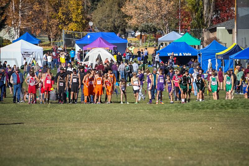 2013 MHSA State XC Championship - Class C - Boys (fs)-4