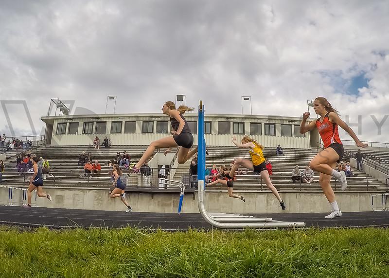 2015 Western Divisionals - 100-110m hurdles - (f)-41