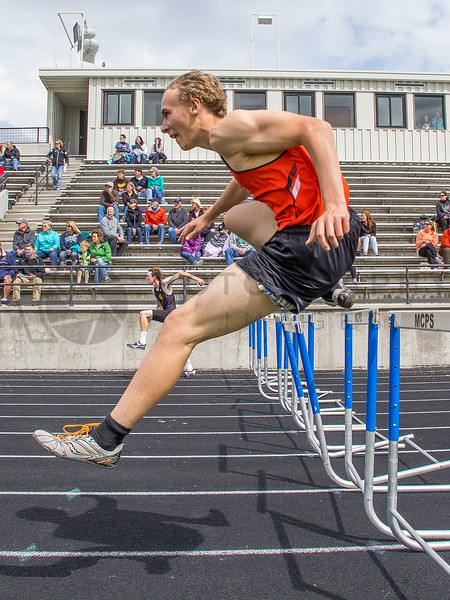 2015 Western Divisionals - 100-110m hurdles - (f)-77
