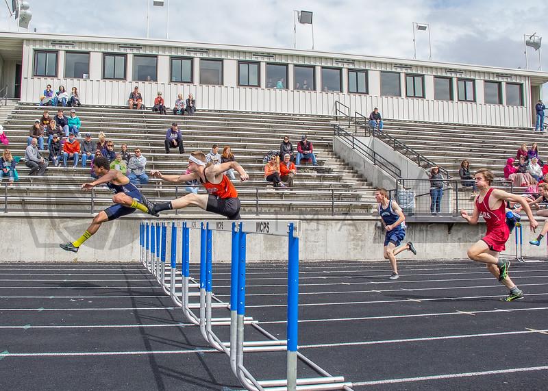 2015 Western Divisionals - 100-110m hurdles - (f)-93