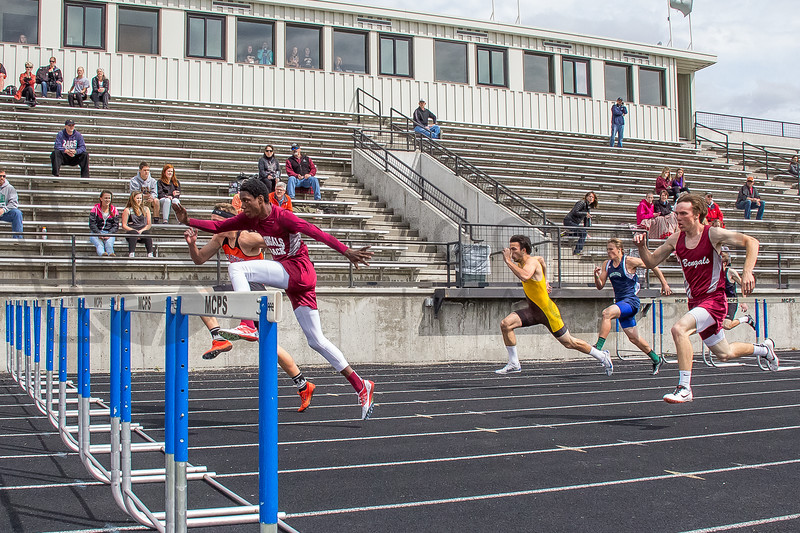 2015 Western Divisionals - 100-110m hurdles - (f)-66