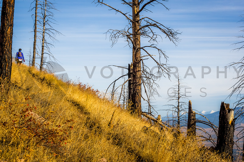 2013 Blue Mountain 30K (fs)-223
