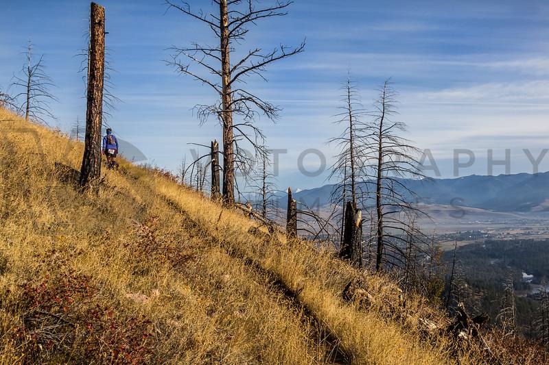 2013 Blue Mountain 30K (fs)-222