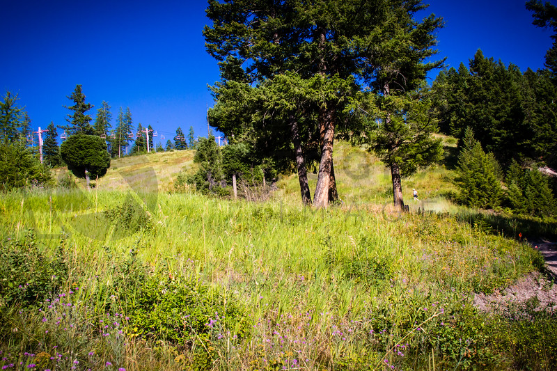 2013 Marshall Mountain Trail Run (fs) -366