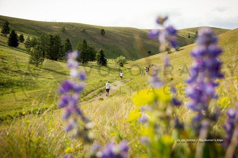 2013 Runner's Edge Trail Night (fs)-42