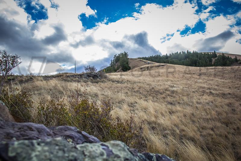 2014 RE Sentinel Hill Cimb (f)-63