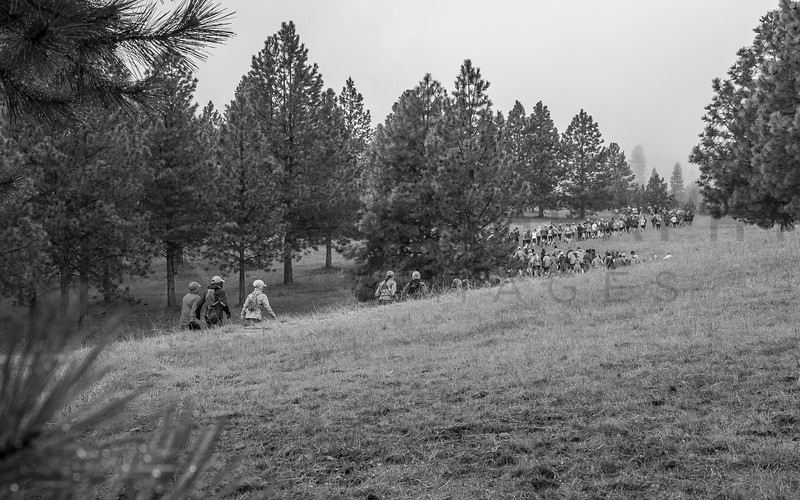 2017 R E  Bitterroot Runoff Trail Races   (f)-52