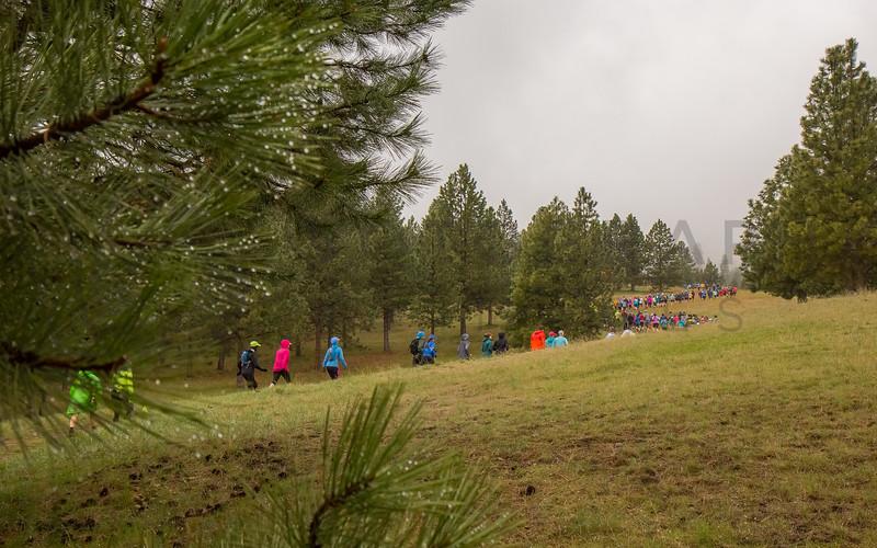 2017 R E  Bitterroot Runoff Trail Races   (f)-51