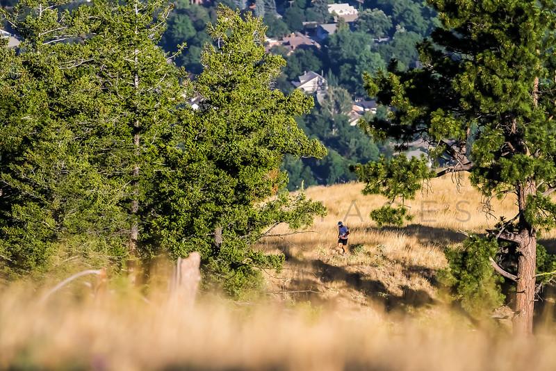 2017 R E  Sentinel Hill Climb (f)-12