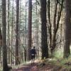 more of Dan's trail ...