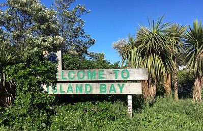 Island Bay used to be my go-to recovery run spot