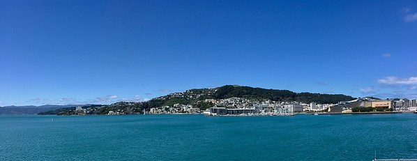 Mt Vic and Wellington waterfront in all its beauty