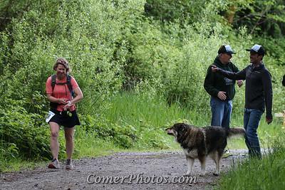 2015 Chuckanut Mountain Marathon and Half