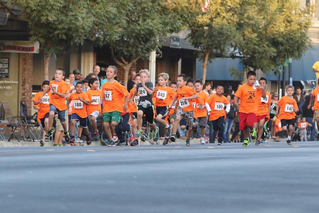 Fiesta Run 2015-250