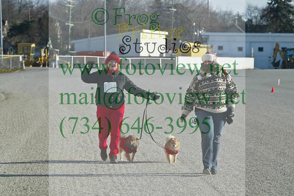 Northville Jingle Bell Run 7 Dec 2013