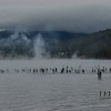 Athletes enter the water as mist rises into the 35 degree air.