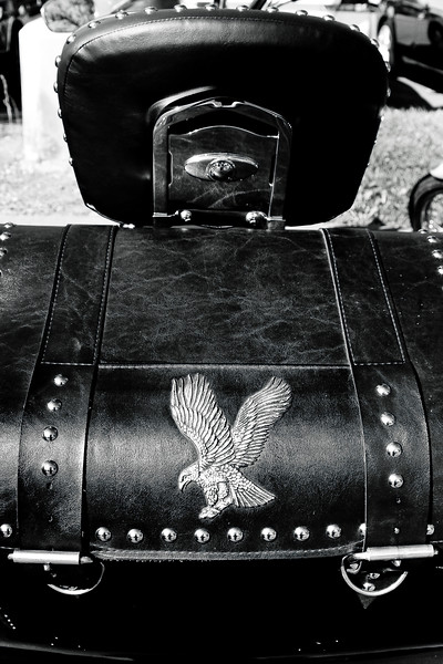 A leather storage box behind the Harley Davidson. I wish I could say more about the Harley, like the year and model, but I don't know very much about motorcycles. ;-)