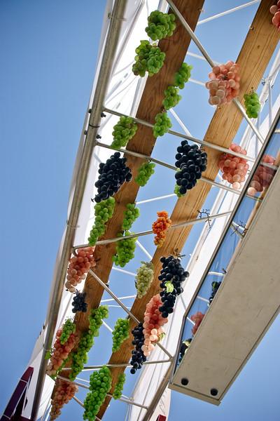 Plastic grapes hung beneath the start/finish gate.
