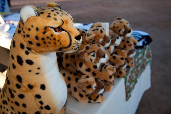 Run for the Cheetah 2010