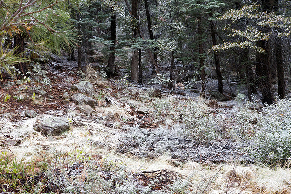 Congrats to all runners that endured intense weather conditions at the Zane Grey Highline Trail 50K 2014!