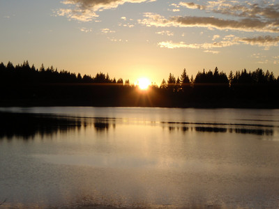 Tahoe Rim Trail 50, 2009-07-18