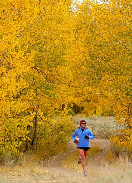 A Fall run in the Sierras