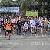 Race - Turkey Day Run 112813 010