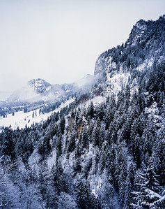 Woodland and hills in the Bavarian Alps