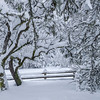Rural Snow Scene, Joyce Valley, WA