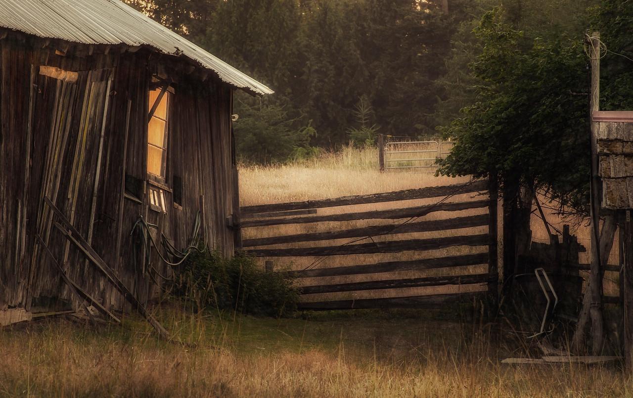 Rural Evening Scene, Joyce Valley, Washington