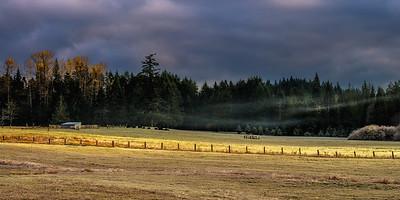 Late Fall, Joyce Valley, Washington