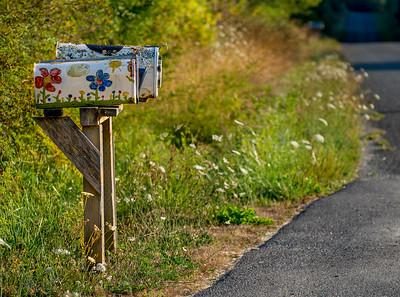 Mail Box, Joyce Valley, Washington