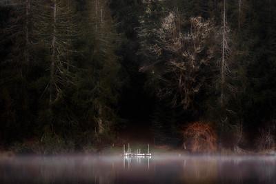 Morning Light, Lake Leland near Quilcene, Washington