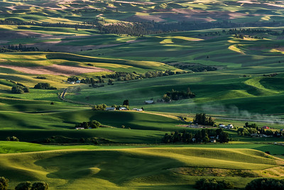 The Palouse farmlands near Colfax, Washington