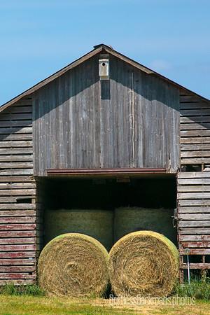 Hay Crib