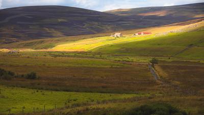 Cairngorms Countryside, Scotland