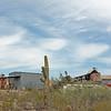 Saguaro; Directing the Mine