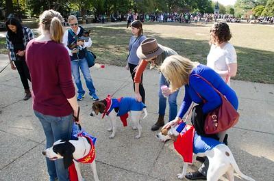 10-28-17 Rural Dog Halloween-8449