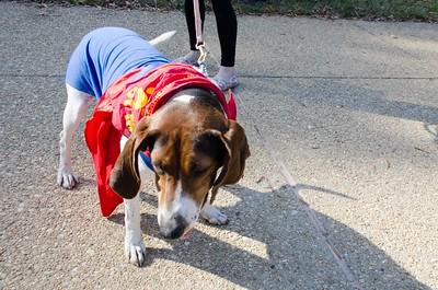 10-28-17 Rural Dog Halloween-8375