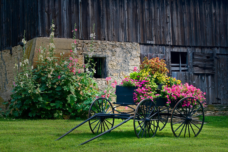 RL 008                        An old weathered barn on the outskirts of Galena forms  a backdrop for an antique wagon filled with flowers, Jo Daviess County, IL.